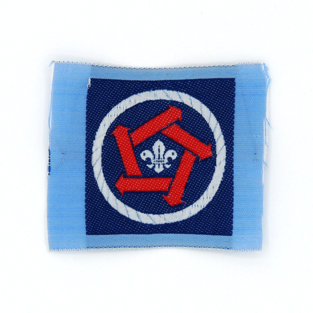 Insignia Scouts Integración